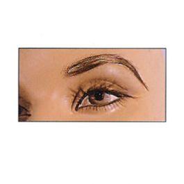 Womans Eyebrows, Pair